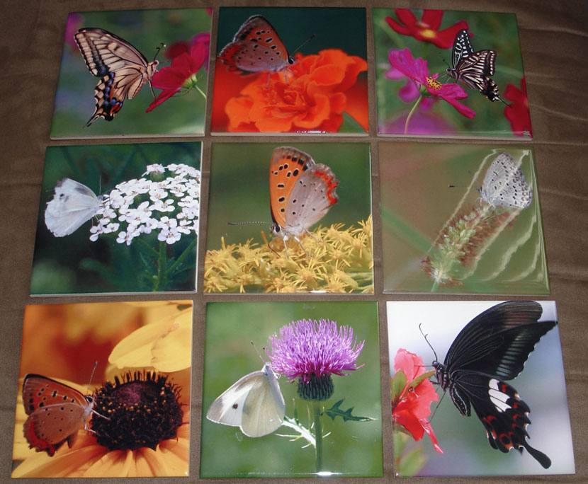 [butterfly art tiles collage]